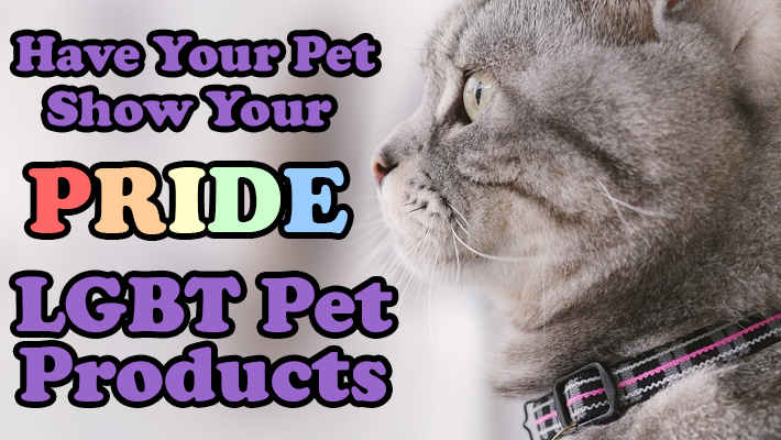 Have Your Pet Show Your Pride: LGBT Pet Products