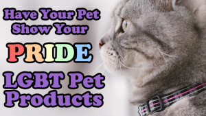 have-your-pet-show-your-pride-lgbt-pet-products